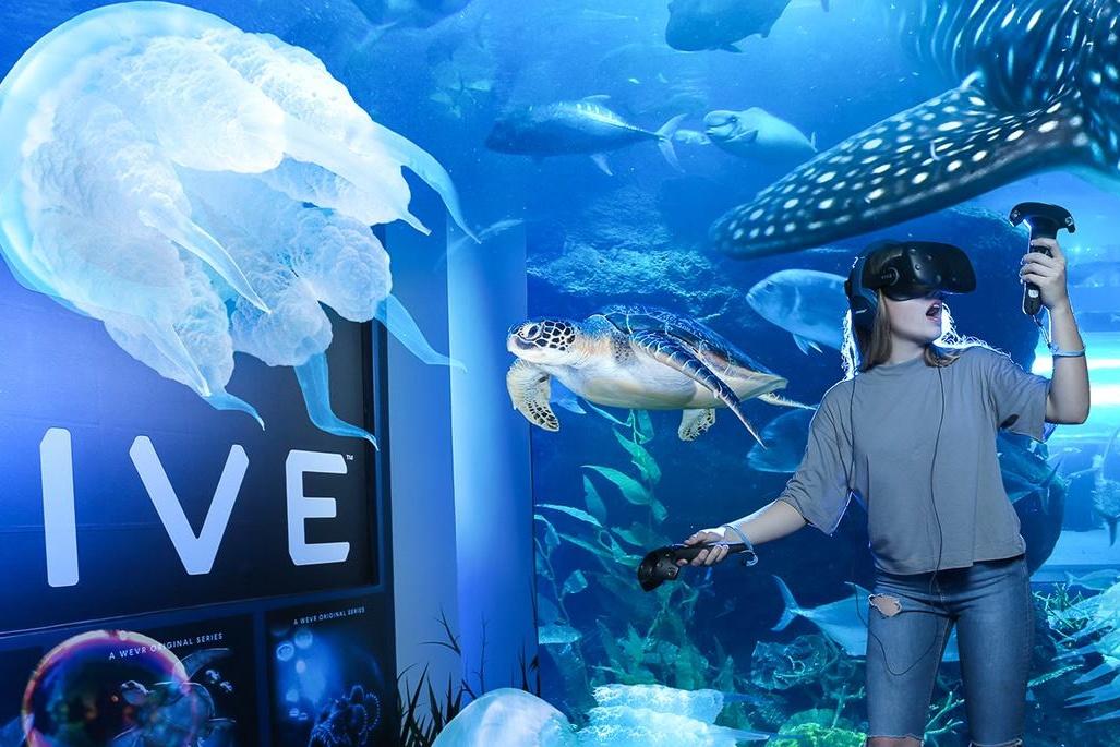 Dubai Aquarium and Underwater Zoo Dubai Mall