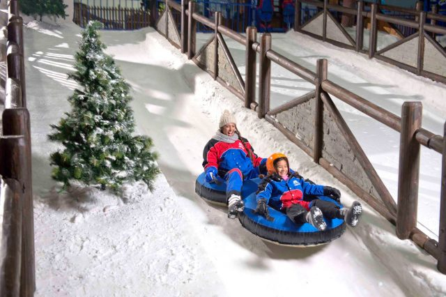 Things to do at Ski Dubai Mall of the Emirates