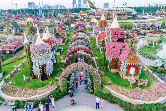 Dubai Miracle Gardens tourist attraction
