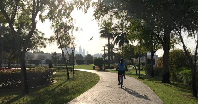 cycling tracks in dubai al barsha pond park inysdo dubai