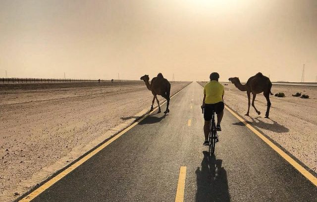 cycling tracks in dubai - al qudra cycle track c_turra