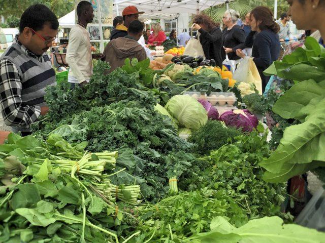 Markets in Dubai - Farmers Market Dubai