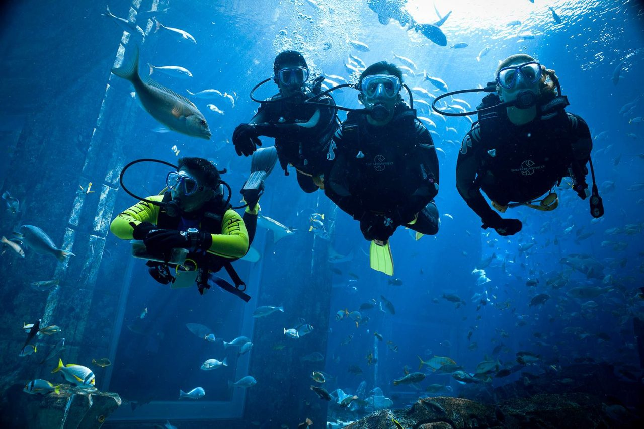 scuba diving in uae - atlantis the palm ambassador lagoon dive