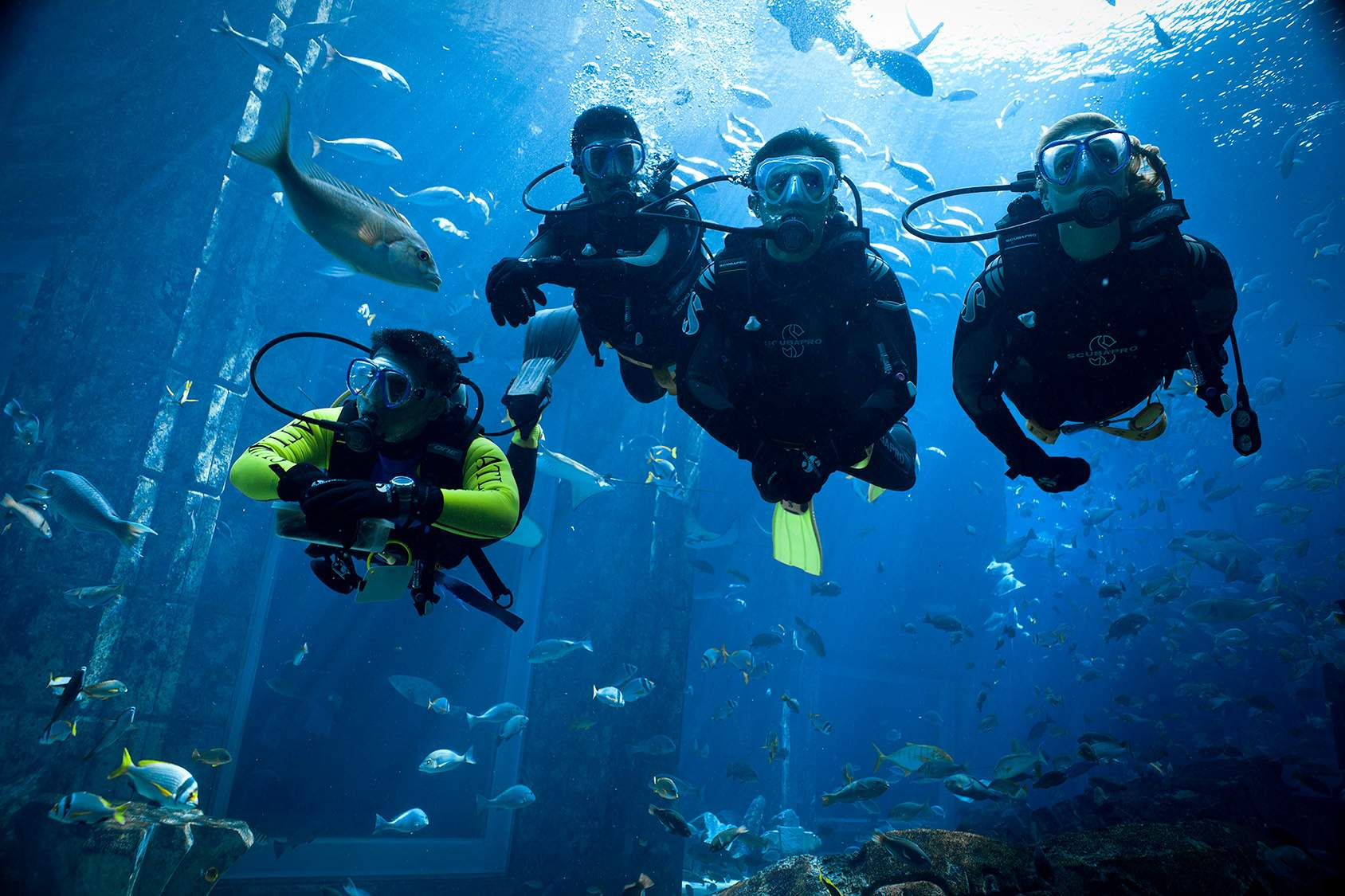 Diving in dubai to fujairah where to go scuba diving in uae insydo - Dive in scuba ...