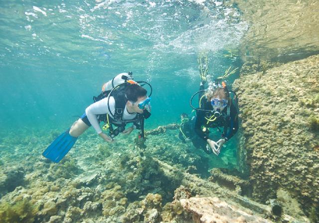 scuba diving in uae - sir bani yas island al mahara diving centre