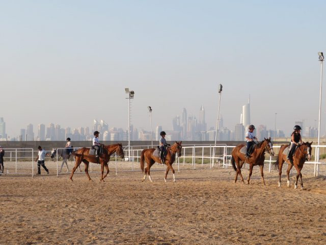 fun things to do in jebel ali - jebel ali equestrian club