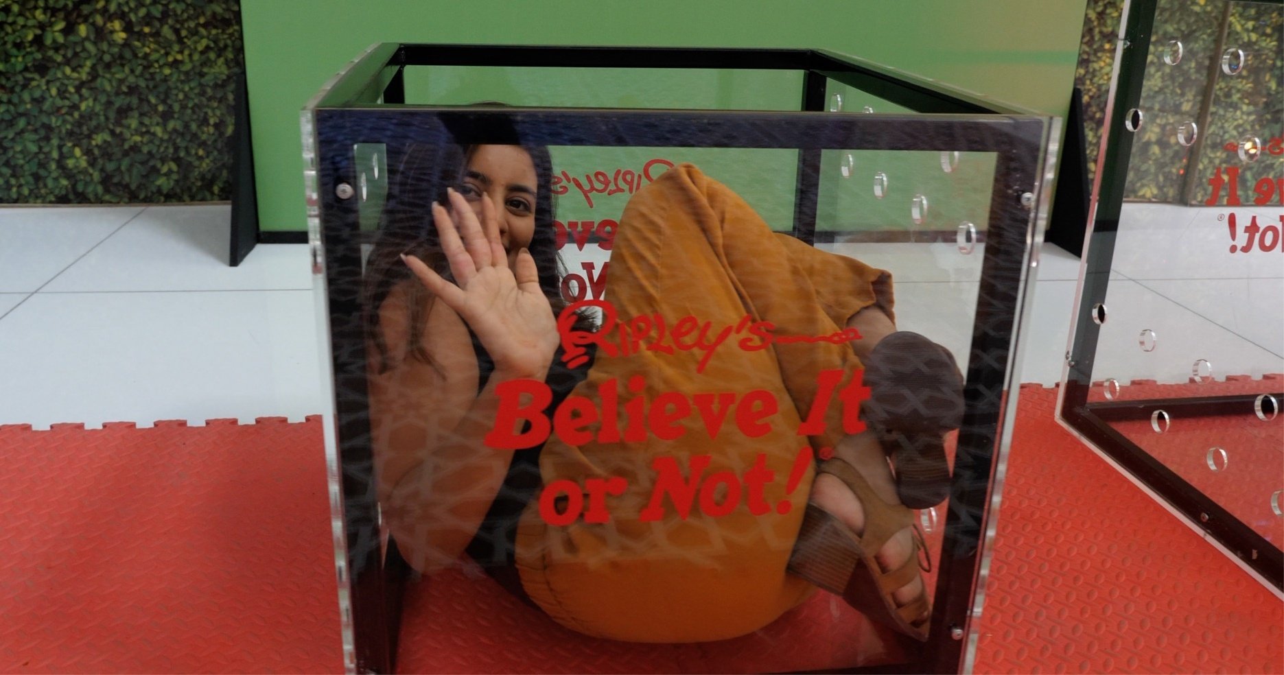 Ripleys-Believe-it-or-Not-at-WAFI-girl-in-contortion-box