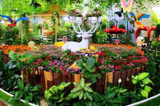parks-in-dubai-dubai-butterfly-garden-Cropped-1