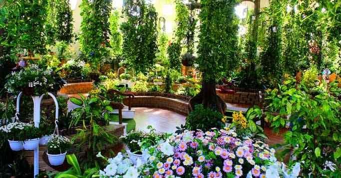 parks-in-dubai-dubai-butterfly-garden-2-Cropped